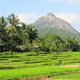 Sri lanka sans visa