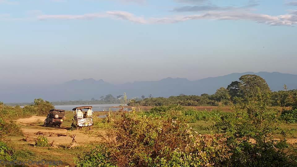 Udawalawe-park
