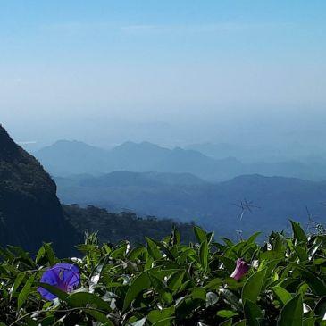 Retour sur mon dernier voyage d'un mois au Sri Lanka