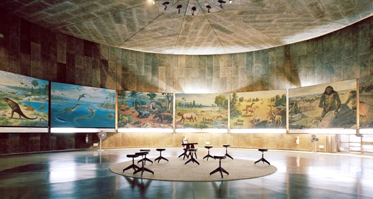 One Day Chandigarh Local Sightseeing Trip by Car Chandigarh Museum and Art Gallery