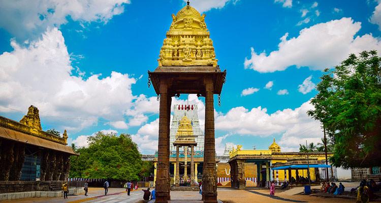 One Day Chennai to Kanchipuram Trip by Car Varadharaja Perumal Temple