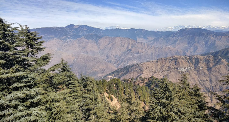 One Day Mussoorie Local Sightseeing Trip by Car Lal Tibba