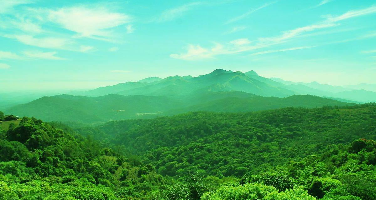 Image result for coorg images
