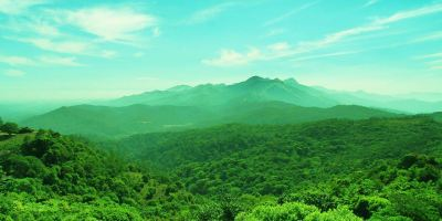 1 Day Mysore to Coorg Tour