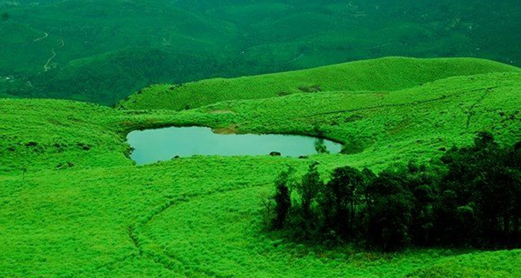 One Day Mysore to Wayanad Trip by Car Chembra Peak