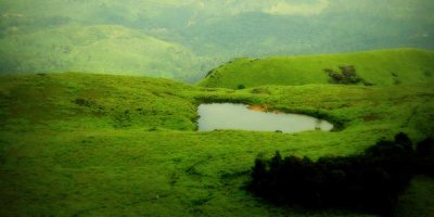 1 Day Mysore to Wayanad Tour