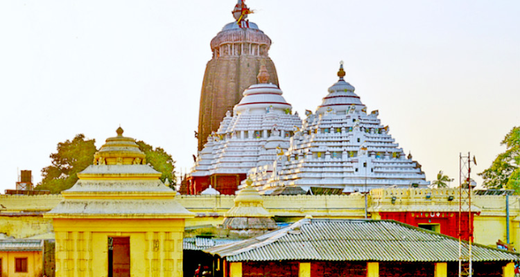 One Day Puri Local Sightseeing Trip by Car Shri Jagannath Puri Temple