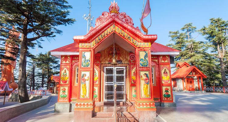 One Day Shimla Local Sightseeing Trip by Car Jakhu Hill/Temple