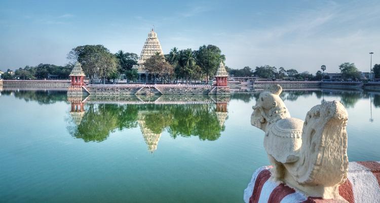 1 Day Coimbatore to Madurai and Palani Tour by Cab Mariamman Teppakulam