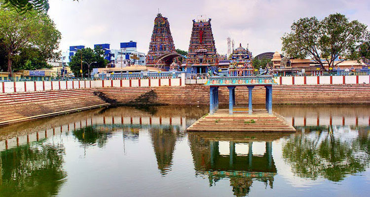 1 Day Coimbatore to Palani Tour by Cab Palani Temple