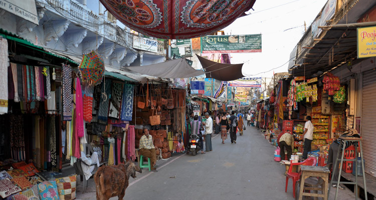 1 Day Jaipur to Ajmer & Pushkar Tour Shopping
