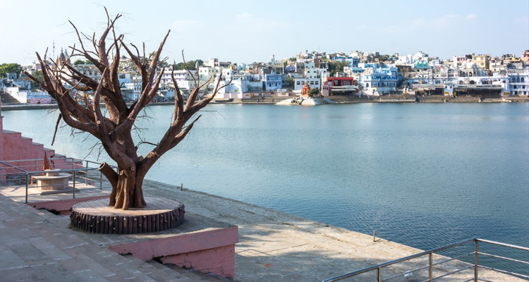 1 Day Ajmer and Pushkar Local Sightseeing Tour Pushkar Lake