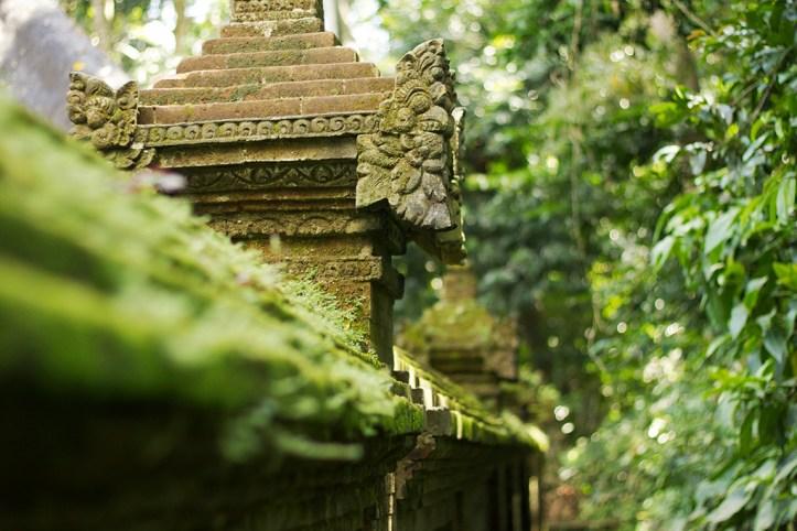 Sacred Monkey Forest Sanctuary, Bali 2