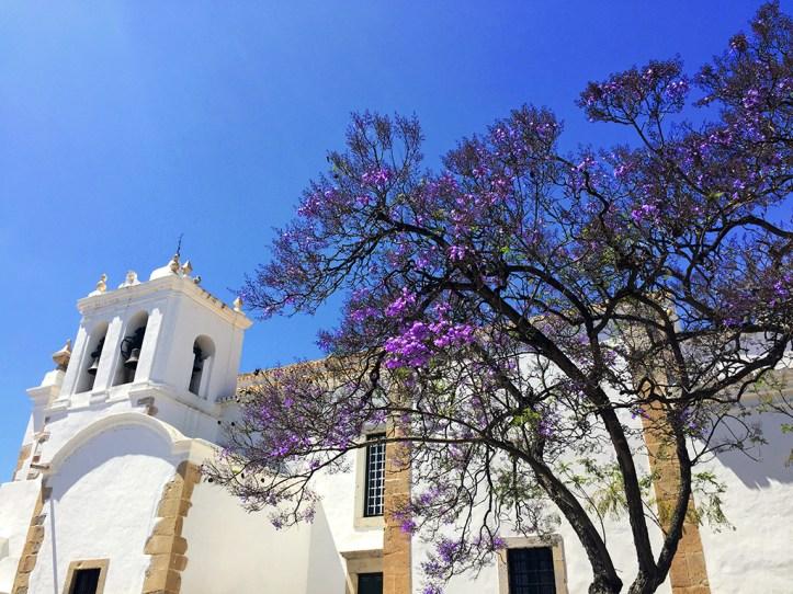 Igreja de Sao Pedro Faro