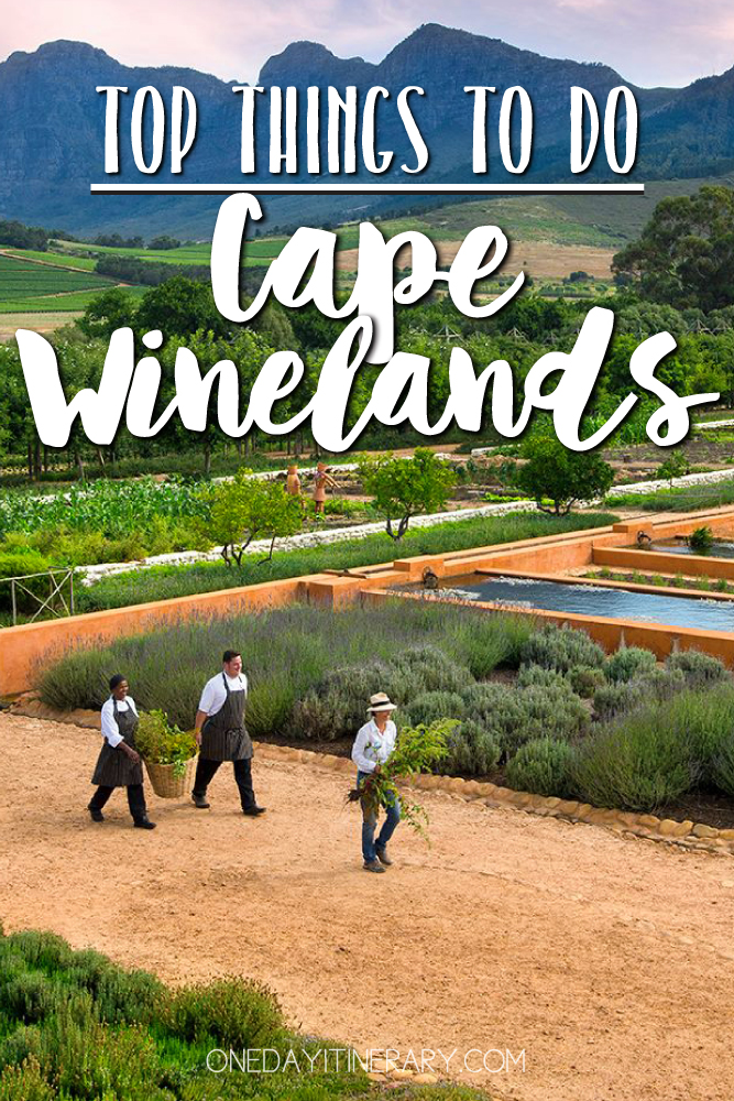 Cape Winelands South Africa Top things to do