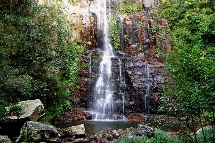 Minnamurra Falls, Shellharbour