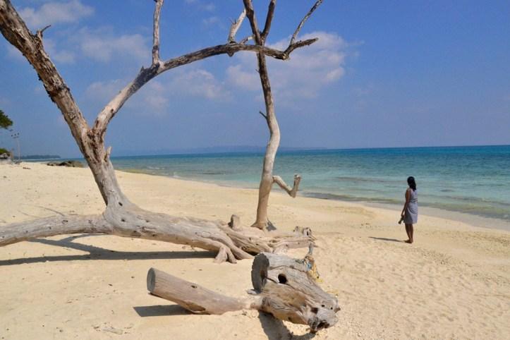 Kalapathar beach, Andaman Islands