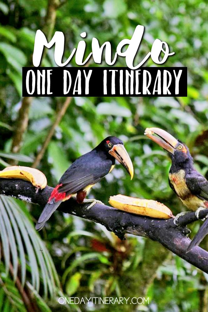 Mindo Ecuador One day itinerary
