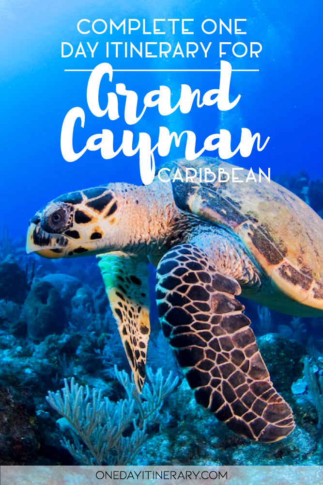 Complete one day itinerary for Grand Cayman, Caribbean