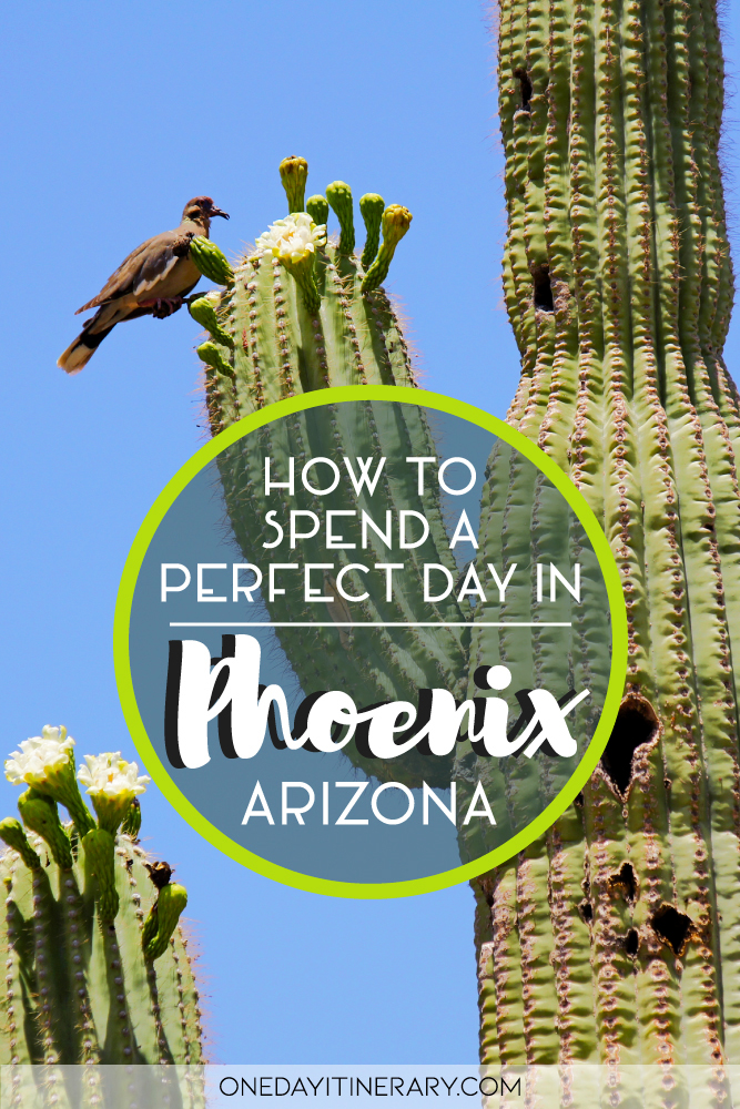 How to spend a perfect day in Phoenix