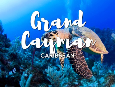 One day in Grand Cayman Itinerary