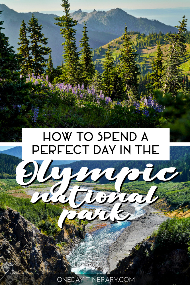 How to spend a perfect day in the Olympic National Park