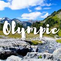 One Day in Olympic National Park Itinerary – Top Things to Do in Olympic National Park, Washington