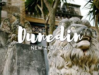 One Day in Dunedin itinerary, New Zealand