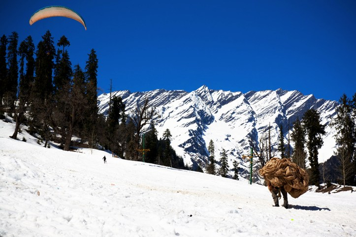 Paragliding, Manali
