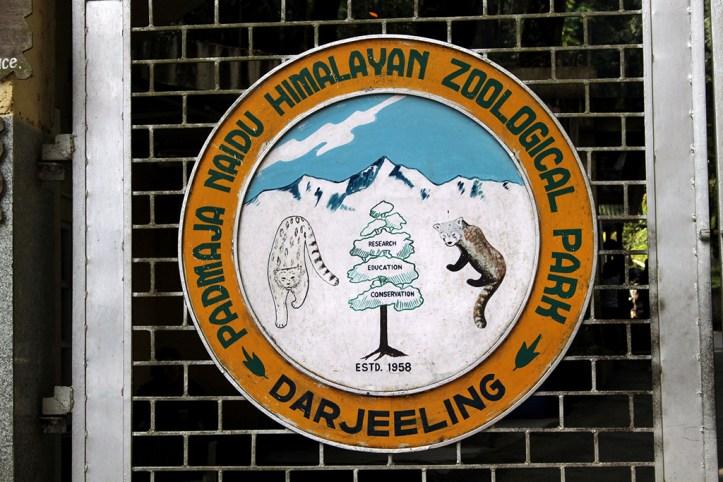 Himalayan Zoological Park, Darjeeling