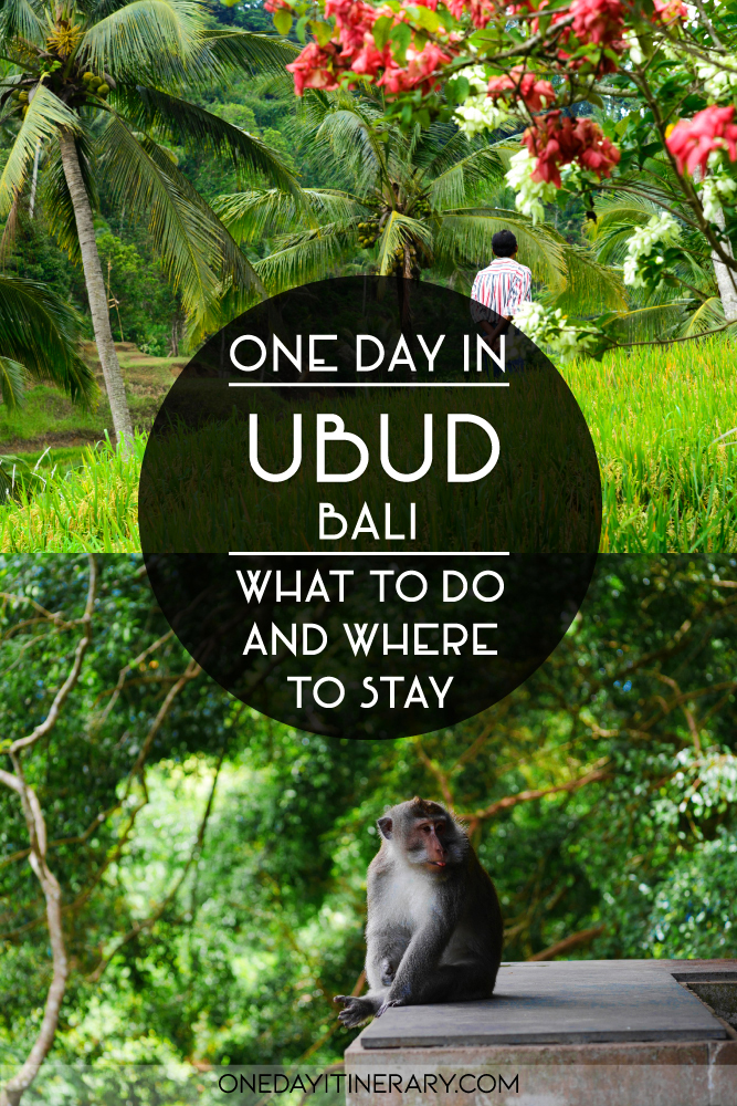 One day in Ubud, Bali - What to do and where to stay