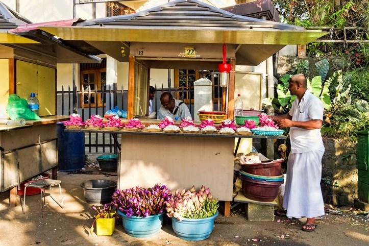 Flower Shop in Kandy