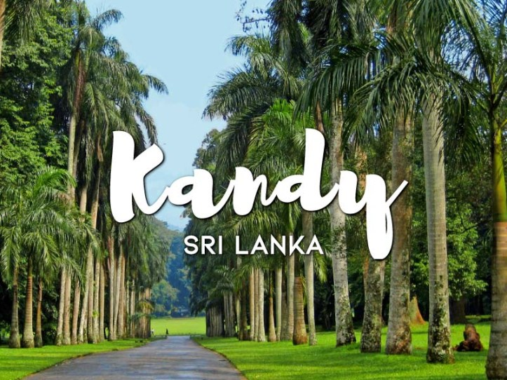 One day in Kandy Itinerary
