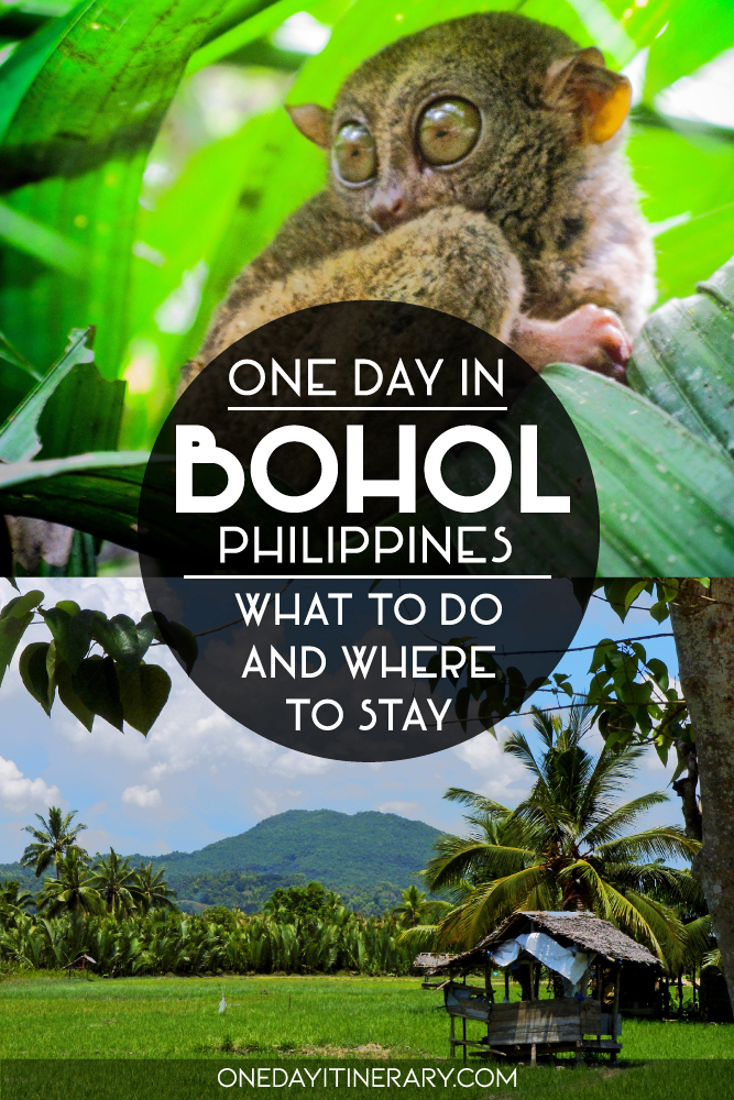 One day in Bohol, Philippines - What to do and where to stay