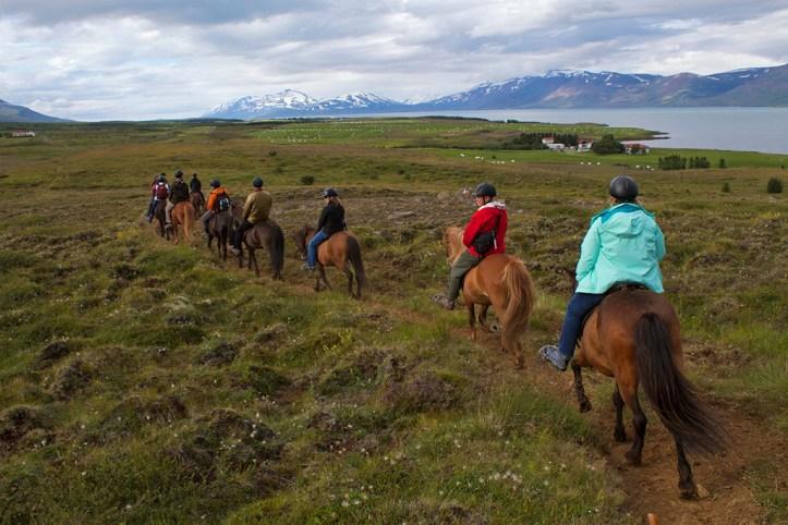 Horse Riding, Akureyri