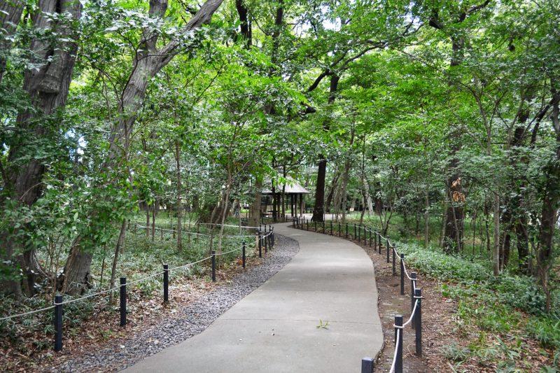 三井の森公園(2)