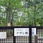 ナザレ修女会の森