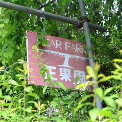 梨の正果園