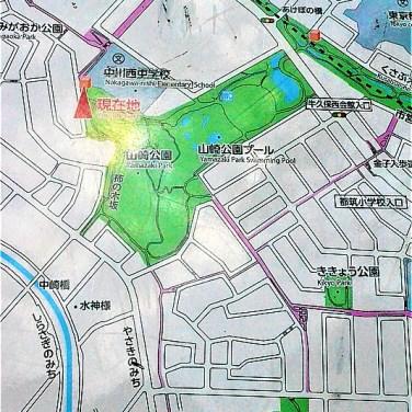 山崎公園プールの奥に来てしまった!(標高43m