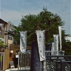 石島橋のたもとにある「川床 金柳」