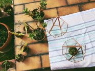 Brass diamond geometric hanging terrarium / glass hexagonal planter (S$40)