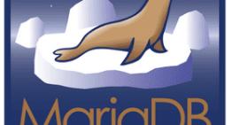 Google migra sus servidores de MySQL a MariaDB