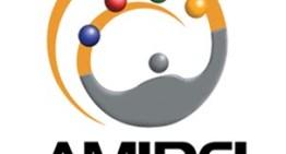 Ganan terreno las redes sociales como herramienta de marketing digital en México: AMIPCI