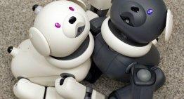 Sony yCogitai se unen para investigación y desarrollo sobre la próxima ola de Inteligencia Artificial