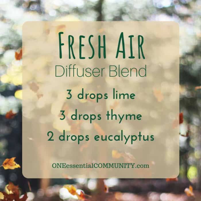 30 favorite FALL essential oil diffuser blend recipes - pumpkin pie, flannel, sweater weather, spiced chai, apple pie, immune booster, harvest, crisp autumn, and many more! plus a free printable of all the recipes - essential oil recipes, essential oil uses, fall diffuser blends