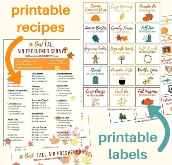 30 fall room spray recipes with essential oils. Easy to make all-natural homemade air freshener sprays in about 30 seconds. recipes for pumpkin pie, apple orchard, gingersnap cookies, vanilla spice, mulled cider, crisp breeze, orange cinnamon buns, spiced chai, sweater weather, fall rain, flannel, immune booster, warm apple pie, and many more. essential oil room spray, DIY air freshener, essential oil recipes, essential oil DIY, homemade room spray, fall DIY, #essentialoilrecipe #essentialoilDIY #doterra #youngliving
