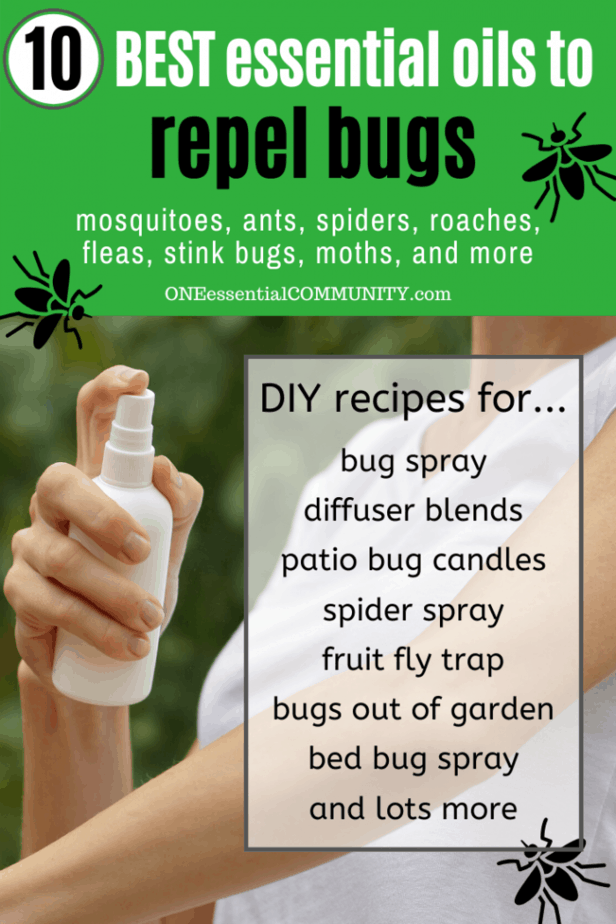 spraying homemade insect repellent on arm