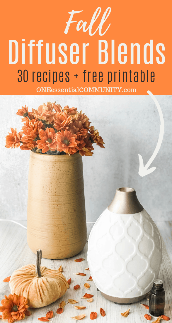 Fall Diffuser Blends - 30 recipes and a free printable by ONEessentialCOMMUNITY.com -- diffuser with tall vase filled with orange flowers, velvet pumpkin, and essential oil bottle