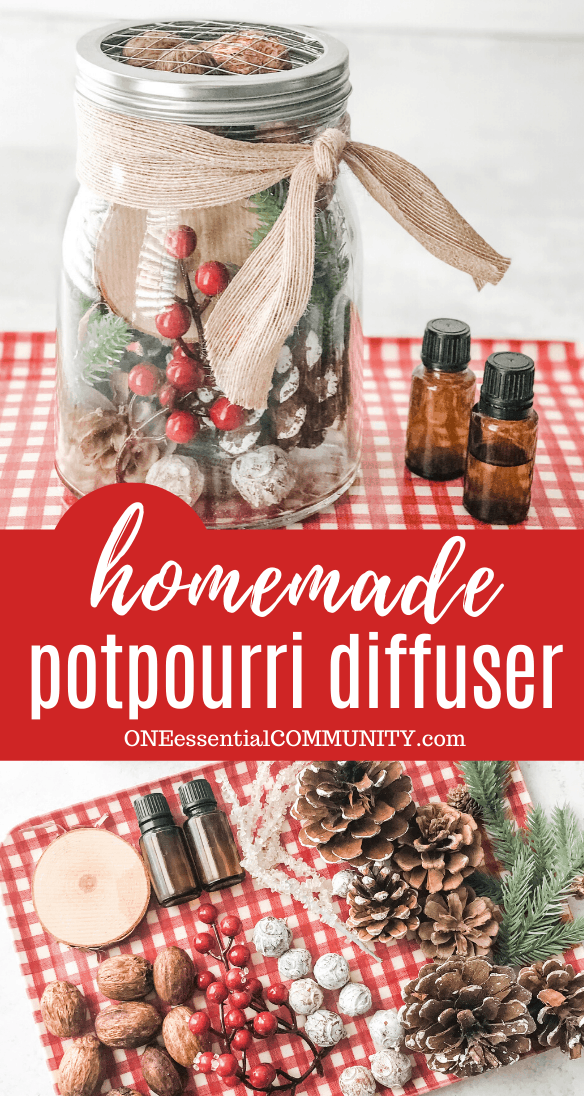 pinterest image of homemade potpourri diffuser for CHristmas