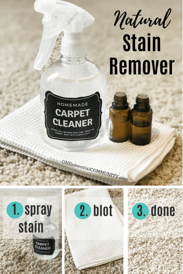steps to easy carpet stain treatment- spray stain, blot, and done